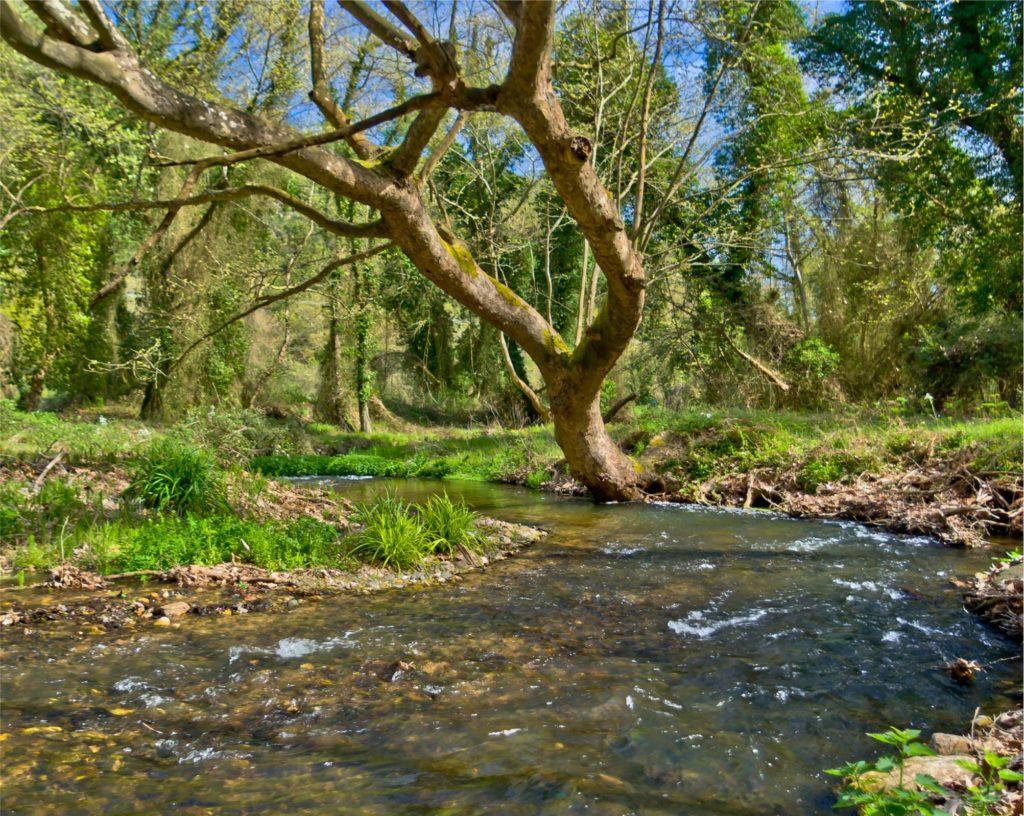 River-Richios